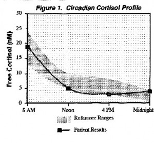 Chart of low cortisol levels during the day.